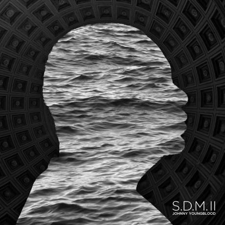 SDMII COVER WEB