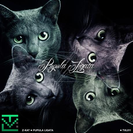Z-KAT cover